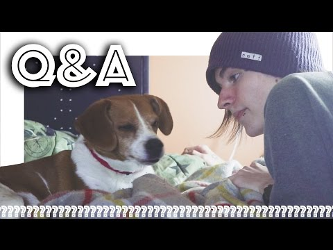 Are Johnnie And I Friends? Q&A