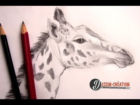 Comment Dessiner Une Girafe Facilement Youtube