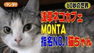【チャンネル登録、よろしくお願いします!】 YouTube日刊ゲンダイ公式...