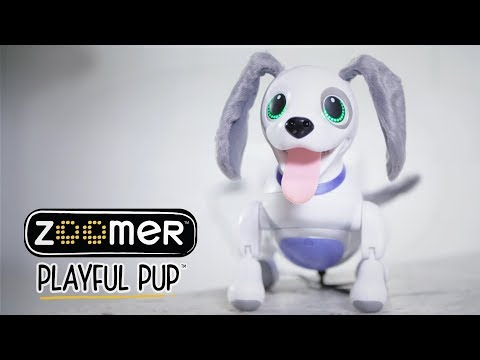 Zoomer | Playful Pup | How-to Video