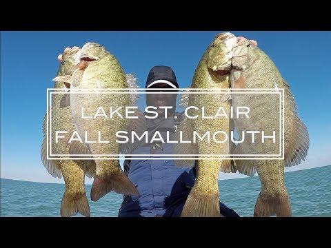 Late FALL Smallmouth - Lake St. Clair 2018