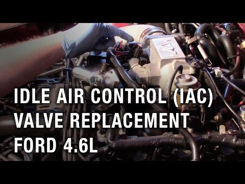 Idle Air Control (IAC) Valve Replacement - Ford 4.6L