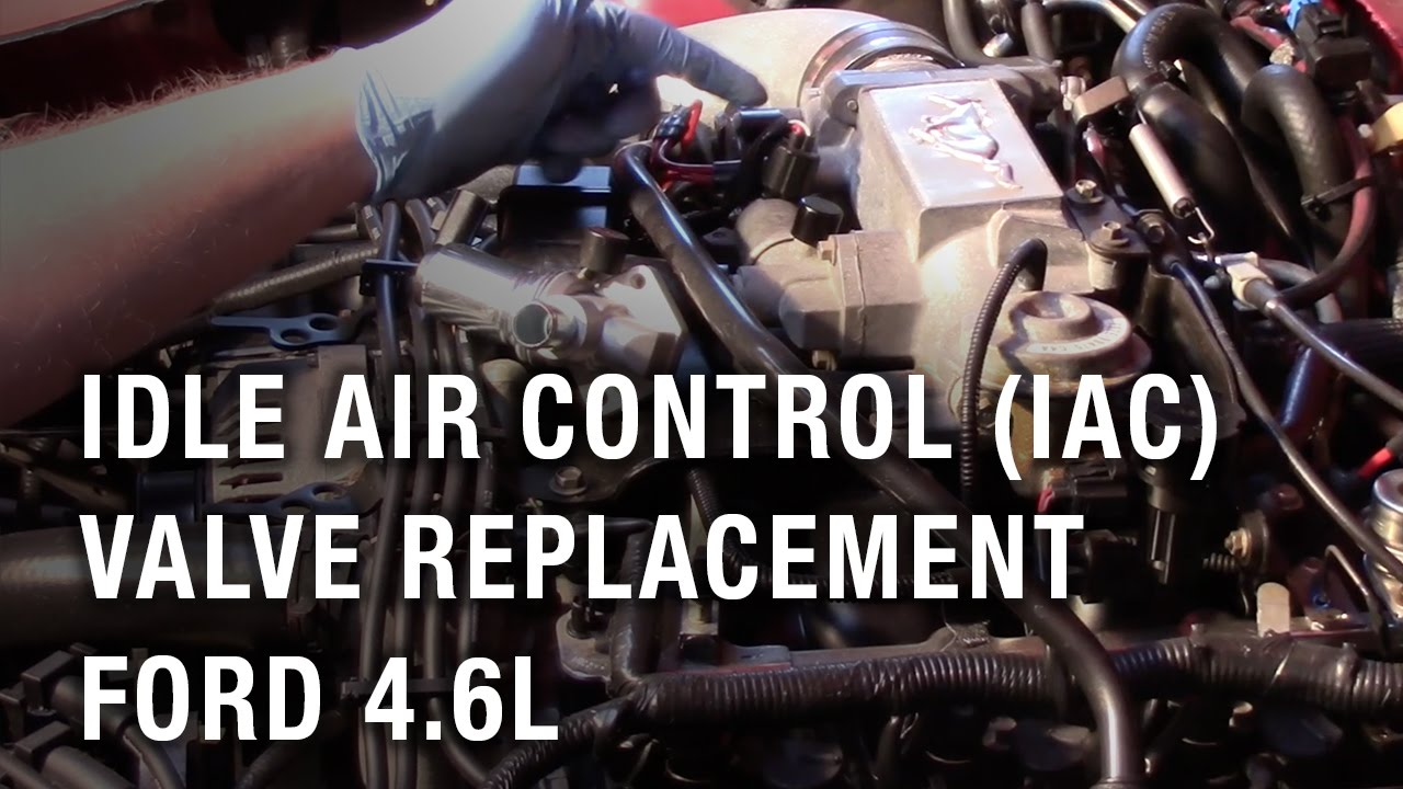 Idle Air Control (IAC) Valve Replacement  Ford 46L  YouTube