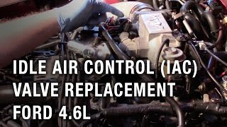 idle air control iac valve replacement ford 46l