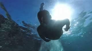 Albatros Aqua Blu Aqua Aquapark 5 Шарм эль Шейх КРАСИВЕЙШИЙ КОРАЛЛОВЫЙ РИФ возле пляжа залив Майа