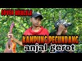 Kampung Pecundang - Anjal Gerot  Cover By Mas Yt