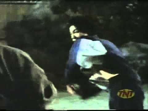 Bruce Lee Hommage No Sound