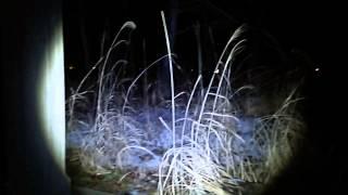 Ghost research 2015 福島県心霊スポット 愛○神社 過去動画ロング編