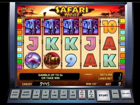 Игровой автомат Safari Heat - бесплатно на Gamble2fun.com