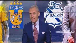 Analisis del TIGRES vs PUEBLA y del NECAXA vs MONTERREY - J16 A2018 - Futbol Picante
