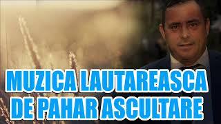 MUZICA LAUTAREASCA DE PAHAR 2019 Colaj cu Sorinel de la Plopeni