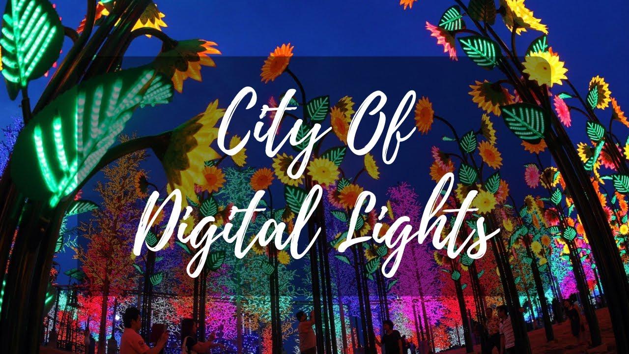 Digitales service paket light