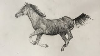 Cheval Réaliste - Speed Drawing