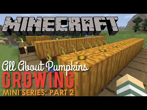 All About Growing Pumpkins In Minecraft Part