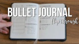 a6 bullet journal flip through maryplethora
