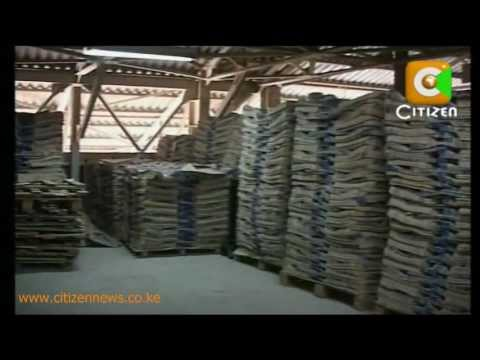 Portland Cement-Back To Work
