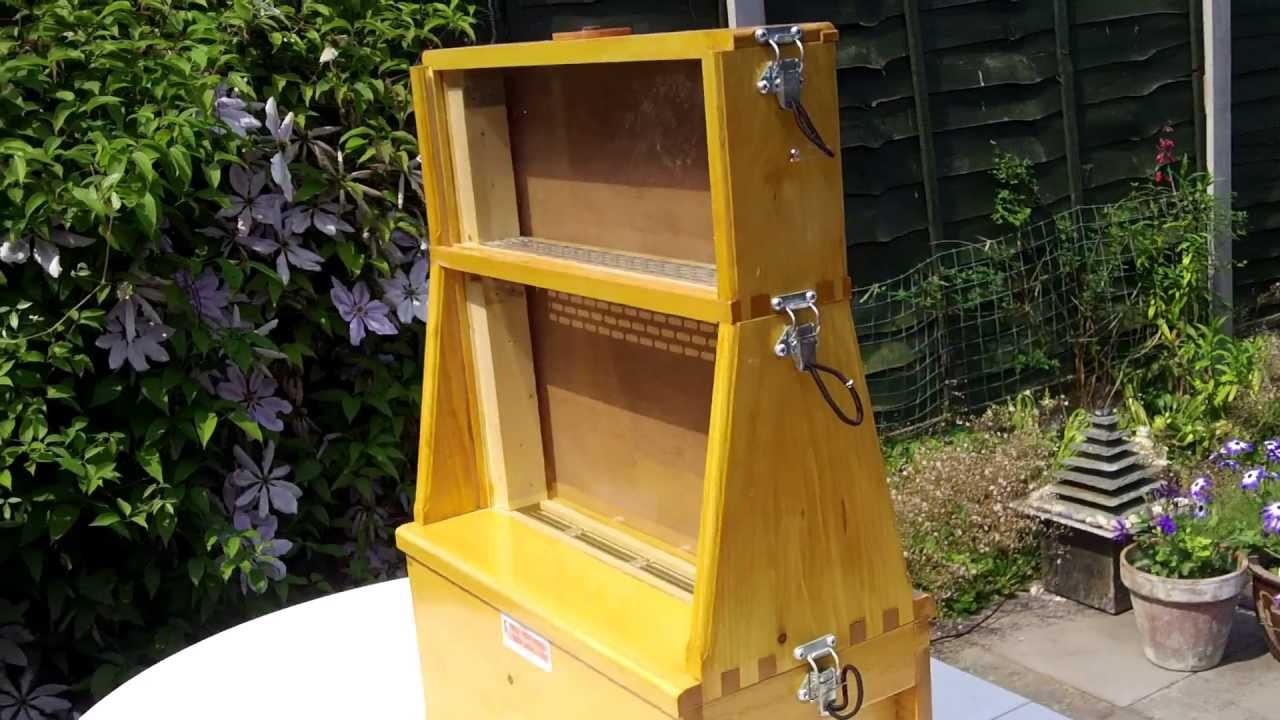 Diy April Medium Ulster Observation Hive Wwwmiifotoscom
