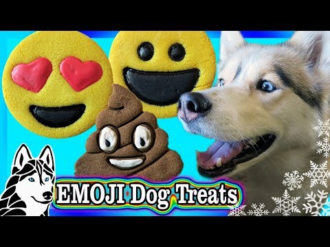 DIY EMOJI COOKIES FOR DOGS | DIY Dog Treats | Snow Dogs Snacks 77
