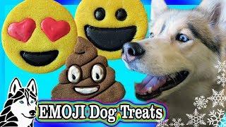 Video DIY EMOJI COOKIES FOR DOGS | DIY Dog Treats | Snow Dogs Snacks 77 download MP3, 3GP, MP4, WEBM, AVI, FLV Januari 2018