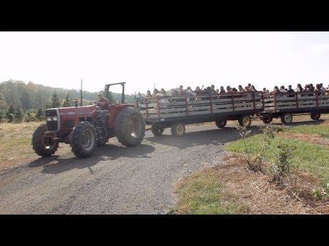 Farm Tours Introduce Students to Local Agricultural Sustainability