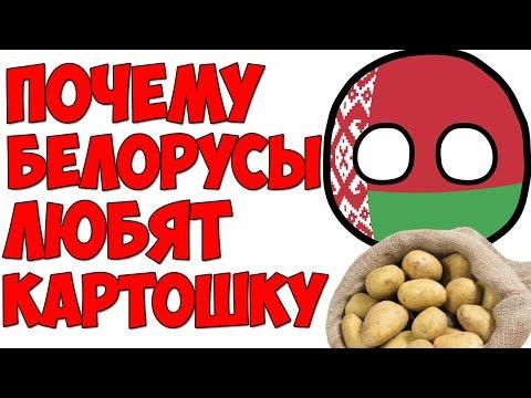 В 4 утра / Почему Белорусы любят картошку?