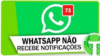 Não recebe as notificações do WhatsApp? APRENDA RESOLVER!