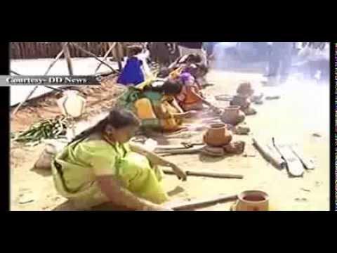 makar-sankranti,-pongal-celebrated-with-pomp-and-fanfare