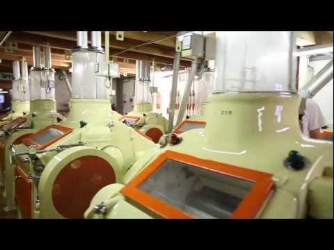 Kittelmühle - Tägliche Energie
