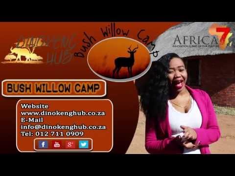 Bush Willow Camp - Dinokeng Hub - Gauteng