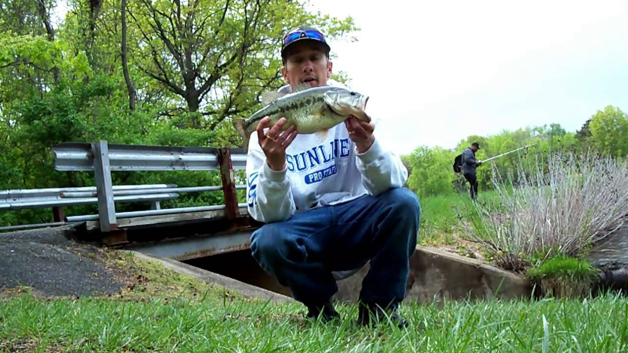 Freshwater fish maryland - April Bass Fishing In Maryland