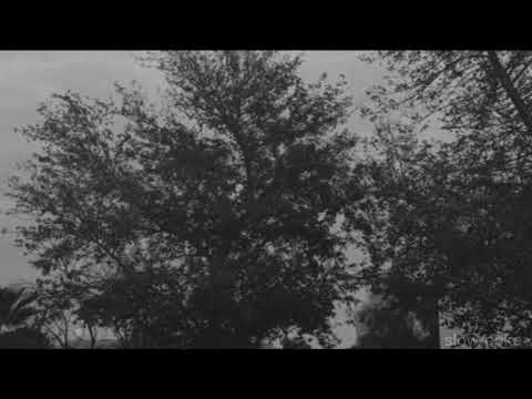 nf - let you down (slowed down)
