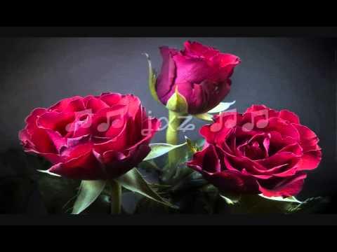 Kurt Elling / Never My Love