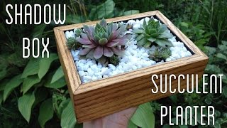 Diy Succulent Planter From A Shadow Box