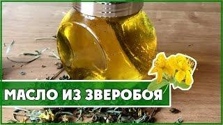 целебное масло из зверобоя. Простой рецепт