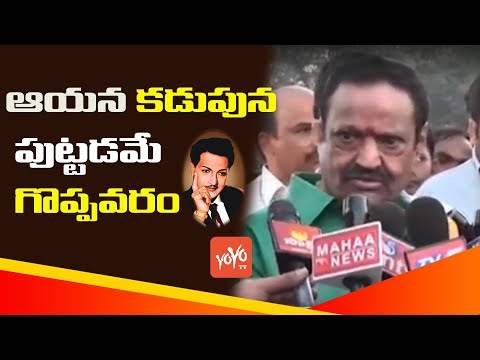 Nandamuri Harikrishna Pay Tribute to Sr...