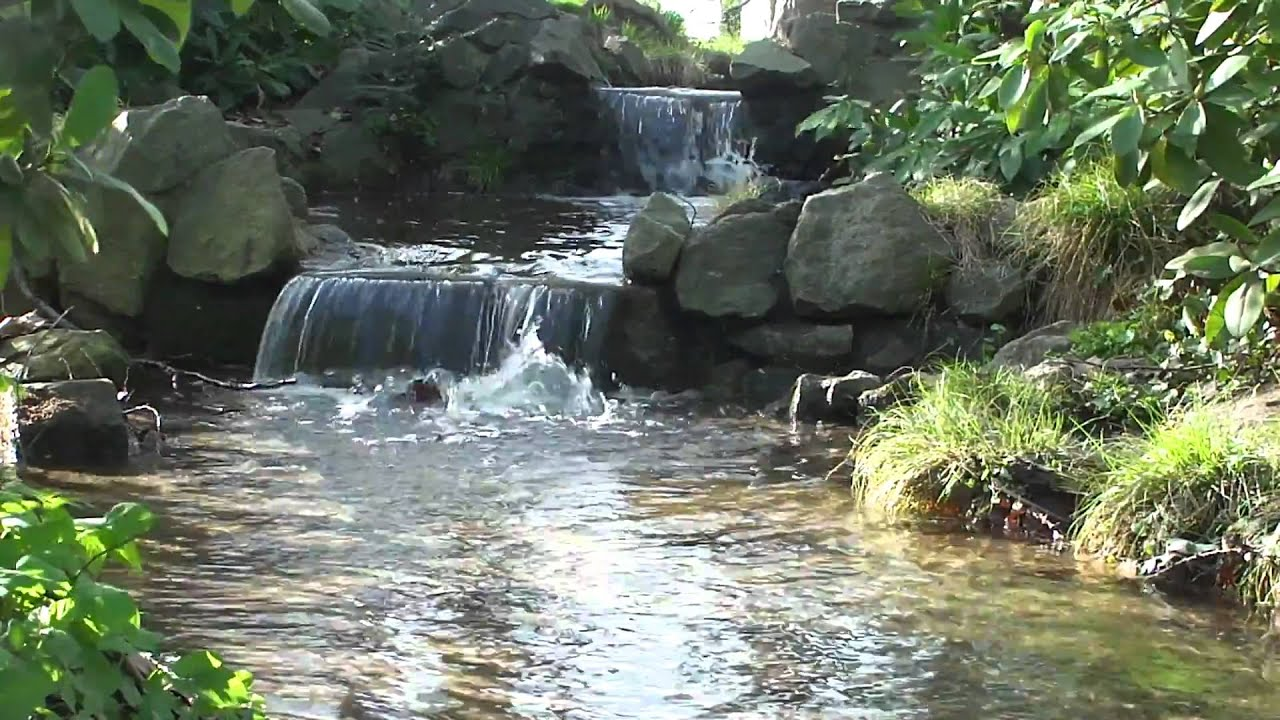 Esl Stream