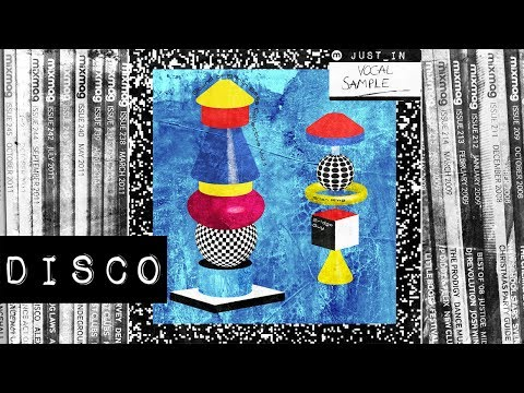DISCO: Brian Ring - He's A Part-Time Player. She's A Full-Time Hustler [Berlin Bass Collective]