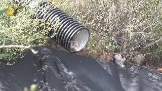 La Presa de la Purísima, presenta alarmantes índices de contaminación bajo nivel de agua