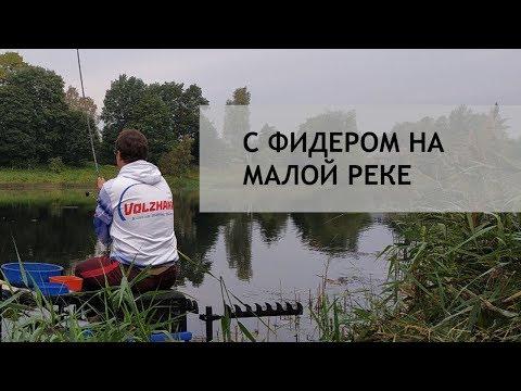 С фидером на малой реке