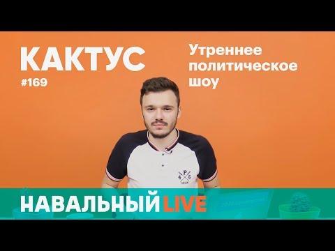 Нападения на полицейских и большое турне Навального по России