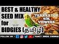 Best & Healthy food seed mix for budgies   தமிழ்   fancy birds chennai