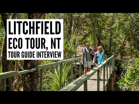 Things to do in Litchfield National Park - The Big Bus tour and travel guide