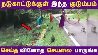 நடுகாட்டுக்குள் இந்த குடும்பம் செய்த வினோத செயலை பாருங்க | Tamil News