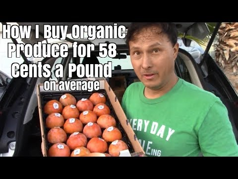 How I Buy Organic Produce for 58 Cents a Pound - Raw Vegan Food Haul