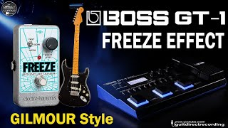 BOSS GT-1 FREEZE Simulation - GILMOUR style [Free Settings].