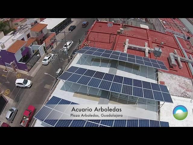 El Acuario Arboledas