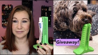 Now dogs can clean their own teeth! Brite Bite Giveaway & Review