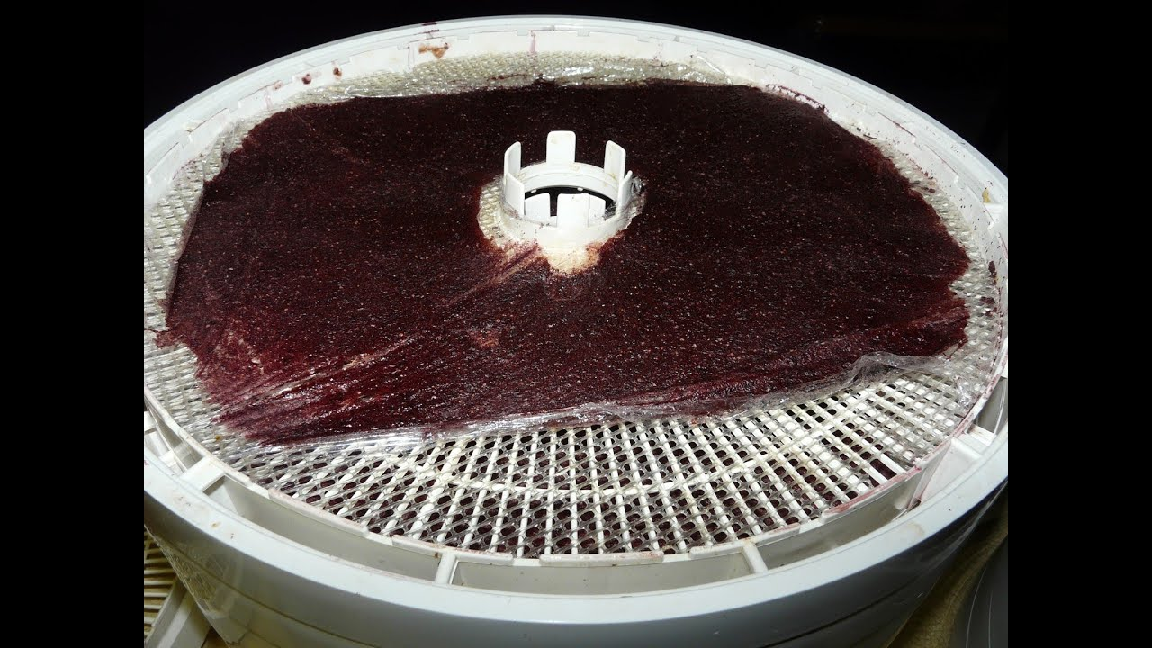 Making Fruit Roll Ups Fruit Leather On The Dehydrator
