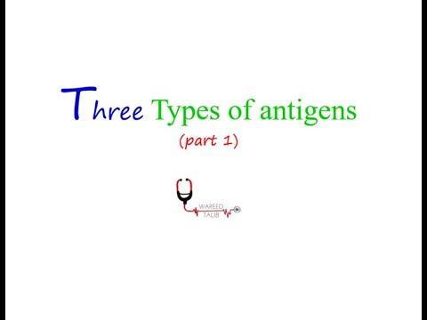 THREE TYPES OF ANTIGENS ( PART 1/2 ) - YouTube