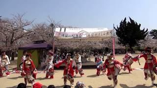 松山よさこい風舞人(鳴子華)~2018春 湯築の桜舞台